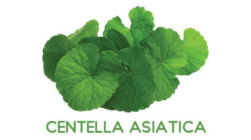 Centella Albuvit