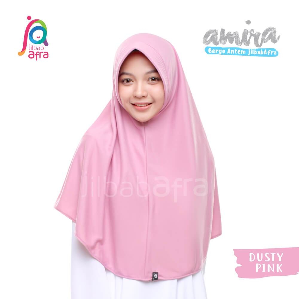 Amira 10